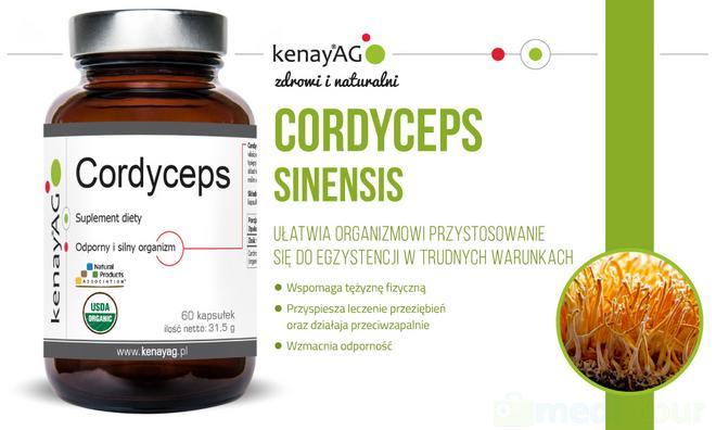 kenayag-cordyceps