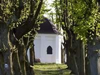 Kaplica Świętej Jadwigi w Trzebnicy