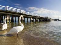 Turystyka Medyczna pomorskie Sopot