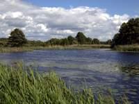 Turystyka Medyczna wielkopolskie jeziora
