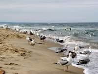 Turystyka Medyczna zachodniopomorskie Bałtyk